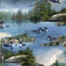 Loons Bolted Fabric- Loons Scenic