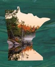 Nature & Wildlife Fabric Panel- Minnesota Autumn