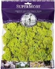 SuperMoss Reindeer Moss, 4oz- Chartreuse
