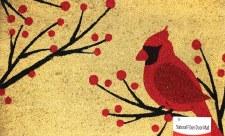 """Natural Fiber Door Mat, 18""""x30""""- Cardinal"""