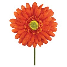 "18"" Gerbera Daisy Stem- Orange"