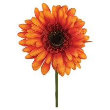 "18"" Gerbera Daisy Stem- Orange Brown"
