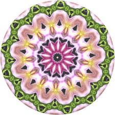Popsockets- Orchid Mandala