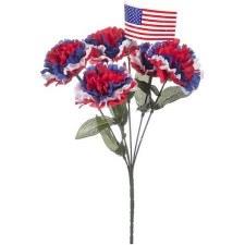 Patrioic Carnation Bush w/ Flag