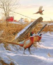 Nature & Wildlife Fabric Panel- Pheasants