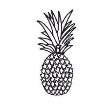 Darice Embossing Folder- Pineapple