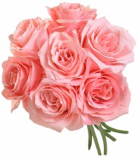 Ashley Rose Wedding Bouquet- Pink