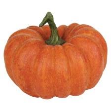Nicole's Pumpkin Patch- Dark Orange Resin