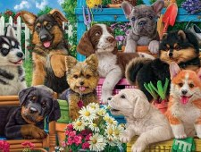 Funny Puppies - 750 Piece Puzzle