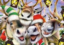 Christmas Selfies, Reindeer - 550 Piece Puzzle