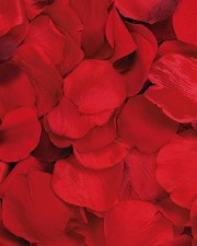 Victoria Lynn Rose Petals, 100ct- Red