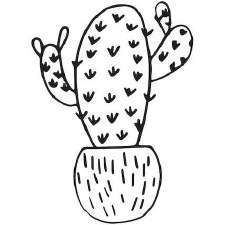 Darice Embossing Folder- Cactus, Six Arm