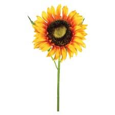 """Fall Stem, 26""""- Sunflower"""