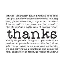 Darice Embossing Folder- Phrases- Thanks
