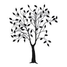 Darice Embossing Folder- Nature- Tree w/ Leaves