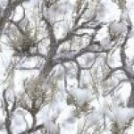 True Timber Bolted Fabric- Snow