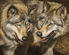 Nature & Wildlife Fabric Panel- Two Wolves