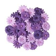 Floral Daisy Embellishments, 48ct- Violet