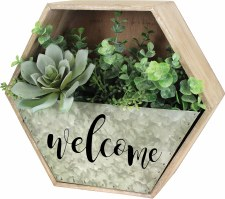 Welcome Wall Planter Kit