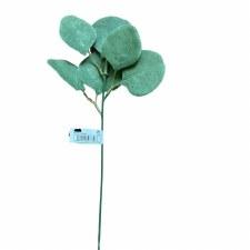 "14"" Eucalyptus Stem"