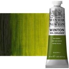 Winsor & Newton Oil Color, 37ml- Sap Green