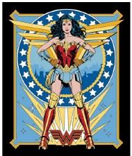 Licensed Fabric Panel- Wonder Woman