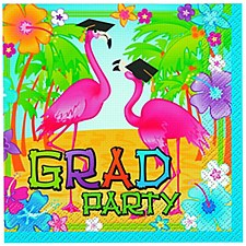 Grad Flamingos Bev Napkin