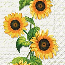 Sunflower Bev.Napkins