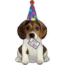 "41""Birthday Puppy"