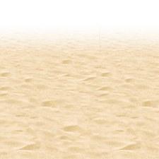 Ocean Floor Border