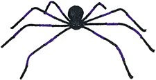 Fearful Spider