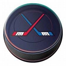 Hockey 9in Dinner Plate