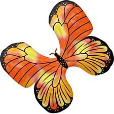 Iridescent Monarch Butterfly