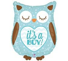 """26""""It's A Boy Owl"""