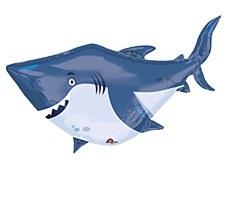 """40"""" Shark"""