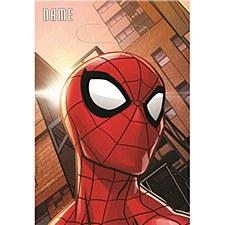 Spider-Man Loot Bag