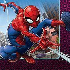 Spiderman Lunch  Napkin