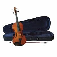 violin 1/2 Breton