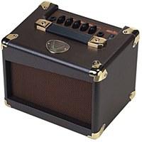 Dean 20w Acoustic Guitar Amp