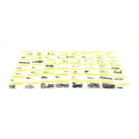1967 Camaro & Firebird Coupe Standard Interior Master Screw Kit 263 Pieces
