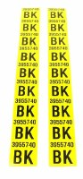 1969 Camaro Rear Leaf Spring Decals Pair GM# 3955740 BK  396 & 427