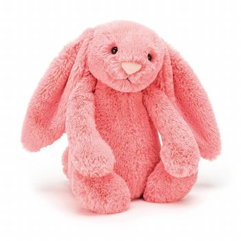 Bashful Bunny Coral Medium