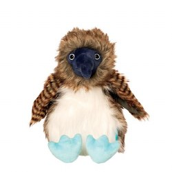 Benny the Blue Footed Boobie
