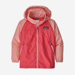 Light & Variable Hoody Pink 2T