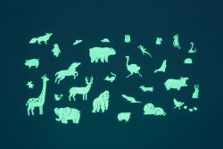Animal Glo Pack - 29 pieces
