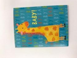 Enclosure Baby Giraffe