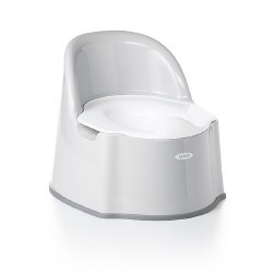 Potty Chair Gray