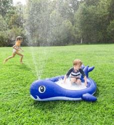 Whale Sprinkler Pool