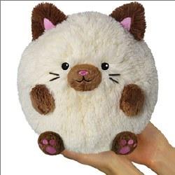 Mini Siamese Cat