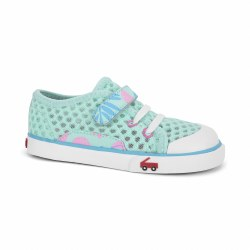 Saylor Mint Tropical 13